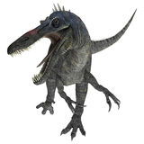 Suchomimus Tenerensis Stock Photography
