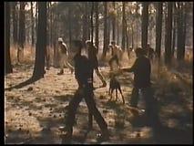 Suchtrupp, der durch Holz geht stock video