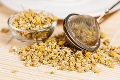 Suchy chamomile z herbacianym durszlakiem i szklanym naczyniem Zdjęcia Stock