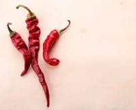 Suchy chili Obraz Stock
