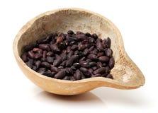 Suchy czerwony arachid zdjęcie stock