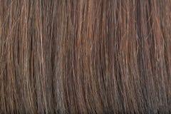 Suchy Długie włosy jest łamany fotografia stock