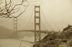 Suchy drzewo i Golden gate bridge, San Fransisco, Kalifornia, usa Fotografia Royalty Free