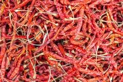 Suchy gorący chillis tło Karmowy składnik obrazy stock