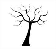 Suchy jesieni drzewo ilustrujący Zdjęcia Stock