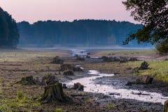 suchy jezioro Obraz Stock