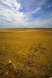 suchy jezioro Fotografia Royalty Free