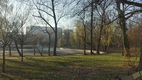 Suchy jezioro w parku w jesieni Obraz Royalty Free