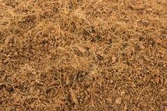 Suchy Kokosowy Coir Zdjęcia Stock