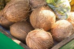 Suchy koks na Ulicznym rynku Zdjęcie Stock