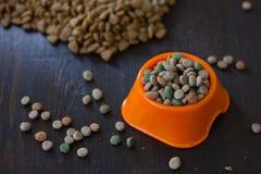 Suchy kot lub psi jedzenie w pomarańczowym pucharze fotografia stock