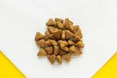 Suchy kota jedzenie na pielusze, zakończenie obraz royalty free
