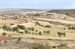 Suchy krajobraz z zbierającymi polami na letnim dniu w Monforte de Moyuela, Teruel Obrazy Stock