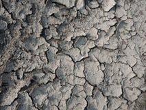Suchy, krakingowy błoto z teksturą, natura krajobraz zdjęcia royalty free