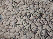 Suchy, krakingowy błoto z teksturą, natura krajobraz fotografia royalty free