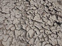 Suchy, krakingowy błoto z teksturą, natura krajobraz obrazy royalty free