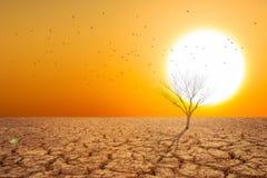 Suchy ląd i gorący suchy powietrze zdjęcie royalty free