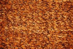 Suchy liść dla zrobił dachowi zdjęcie royalty free