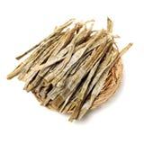 Suchy m?ody bambusowy kr?tkop?d fotografia royalty free
