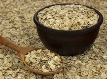 Suchy owsów płatków oatmeal w pucharze na tle z drewnianym spo Fotografia Stock