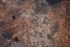 Suchy piasek na skale Zdjęcia Royalty Free