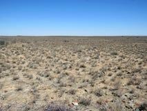 Suchy Południowa Afryka Karoo krajobraz Obraz Stock
