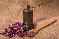 Suchy róża proszek zdjęcie royalty free