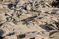 Suchy rzeczny kamienia strzał w ciepłym świetle fotografia stock