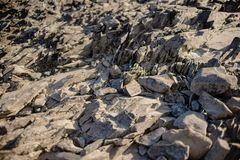 Suchy rzeczny kamienia strzał w ciepłym świetle zdjęcie stock