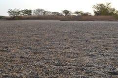 Suchy sawannowy siedlisko w Sahel paska regionie Senegal, Zachodni Afryka fotografia royalty free
