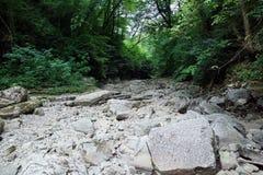 Suchy skalisty riverbed rzeka Zdjęcie Royalty Free