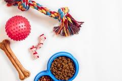 Suchy zwierzęcia domowego jedzenie w pucharze i zabawkach dla psów na białego tła odgórnym widoku zdjęcie stock