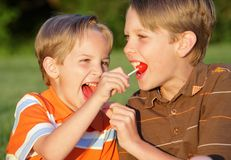 Sucker Sharing. Two young blond brothers sharing candy suckers at a park in summer Stock Photography