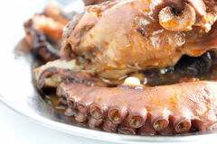 Suckers. Detail of octopus suckers on a metal tray Royalty Free Stock Photography