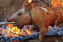 Suckling pig on a spit close up Stock Images