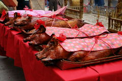 Suckling Pigs Offerings. A-Ma Temple, Macau. Suckling Pigs offerings. A-Ma chinese taoist temple, built in 1488 to honor the goddess Mazu (Matsu). It predates Royalty Free Stock Photography