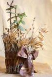 Suckulent växt i hemlagad kruka Arkivbild