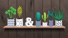Suckulenter och kaktusväxter i krukor vektor illustrationer