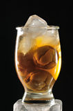 Suco da ameixa do gelo Fotos de Stock