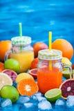 Suco da vitamina do citrino com frutos frescos ao redor Imagem de Stock