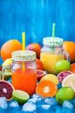 Suco da vitamina do citrino com frutos frescos ao redor Fotografia de Stock