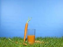 Suco de cenoura fotografia de stock