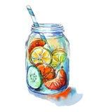 Suco de fruta ilustração royalty free