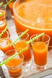 Suco de fruta mixa Imagens de Stock