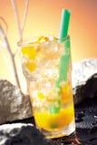 Suco de fruta Sparkling Imagens de Stock