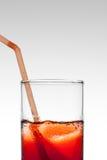 Suco de fruta vermelho Foto de Stock Royalty Free
