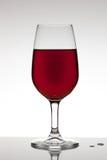 Suco de fruta vermelho Imagem de Stock Royalty Free