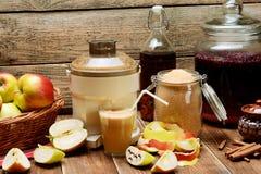 Suco de maçã caseiro delicioso Fotos de Stock
