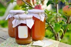 Suco de maçã enlatado fotos de stock royalty free