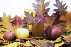 Suco de maçã fresco na tabela com maçãs e folhas de bordo fotos de stock royalty free